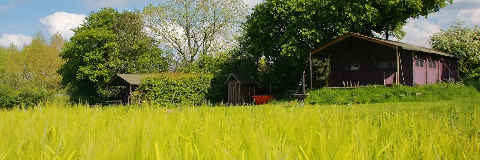 Glamping at Manor Farm