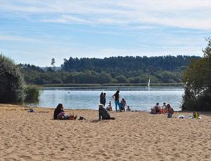 Wild inland beach close by at Frensham Ponds
