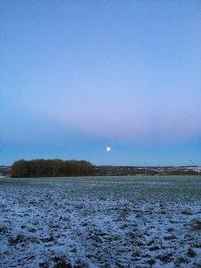 Snowy morning at Manor Farm